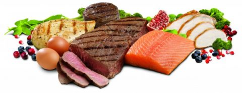 Why Eat Protein Rich Foods?